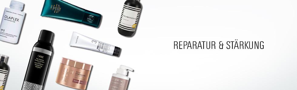 Reparatur & Stärkung