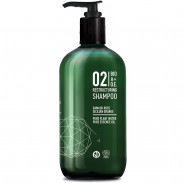 Great Lengths BIO A+O.E. 02 Restructuring Shampoo 500 ml