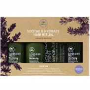 Paul Mitchell Tea Tree Lavender Mint Soothe & Hydrate Hair Ritual Travel Set