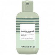 Eslabondexx Clean Care Rebalancing Purifying Shampoo 250 ml