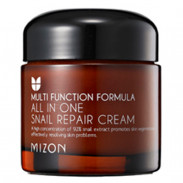 Mizon All in One Snail Repair Cream 75 g