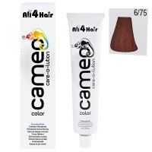 Cameo Color Haarfarbe 6/75 dunkelblond braun-mahagoni 60 ml